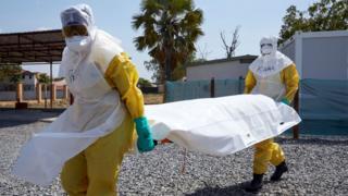 Dokto dey carry ebola victim