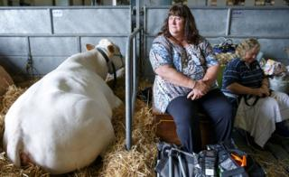 Two women and their cattle