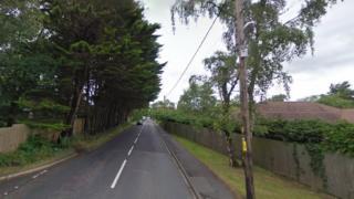 Horton Road, Ashley Heath