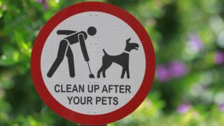 Fines have been handed out for pets doing on to sports pitches which were unmarked