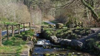 Nant Carn, Cwmcarn Forest