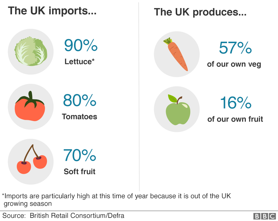 Infographic showing goods imported from the EU and produced in the UK