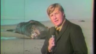 Paul Linnman e a baleia