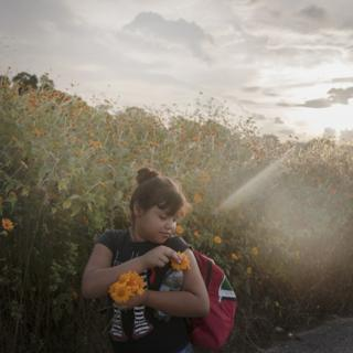A girl looks at a flower in a meadow