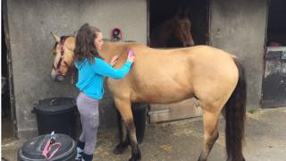 A girl grooming a horse