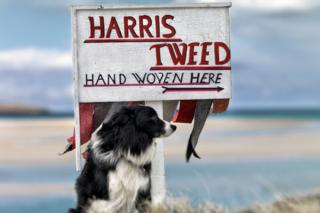 Harris Tweed exhibition image