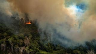 A handout photo made available by Greenpeace Brazil showing smoke rising from the fire at the Amazon forest in Novo Progresso in the state of Para, Brazil,