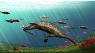 Fossil reconstruction
