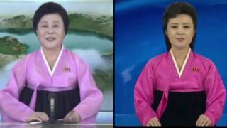 Ведущие северокорейского телевидения