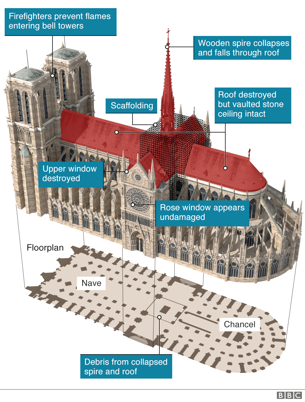 Graphic showing 3d image of Notre Dame highlighting roof and spire which have been destroyed