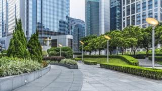 Cidade arborizada
