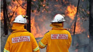 New South Wales firefighters guard a bushfire