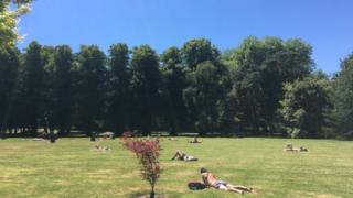 sunbathers in park