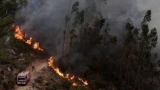 Пожар в Алгарви
