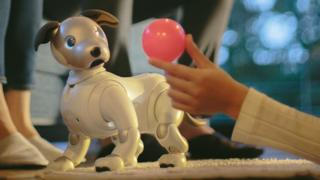 The new Sony Aibo robot dog pet