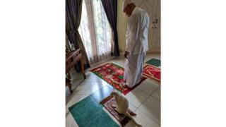 Cat-joining-in-with-prayer