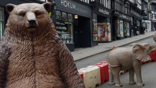 A fibre glass bear and baby elephant in Wyle Cop