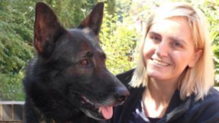 Dog and handler