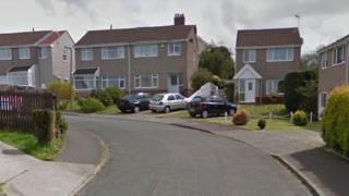 Google Streetview of The Mead