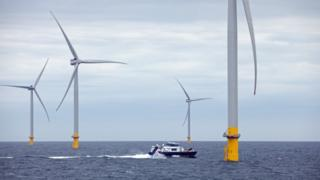 environment Offshore wind farm