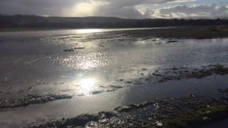 Flooded fields at the Foyle Estuary