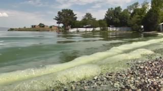 Green algae tide on Armenia's Lake Sevan, July 2019