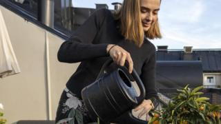 Joven sueca regando una planta