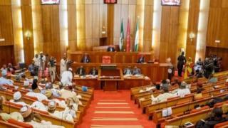 Nigeria Senate Floor
