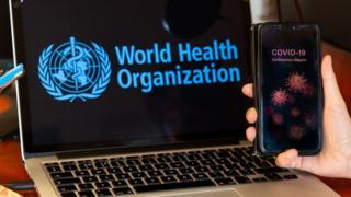 World Health Organisation website on a laptop