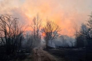 news Smoke rises from a forest fire in the exclusion zone around the Chernobyl nuclear power plant, outside the village of Rahivka, Ukraine on 5 April 2020
