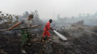 Indonesian firemen put out a fire on peatland in Rimbo Panjang, Riau province on 15 September 2015.