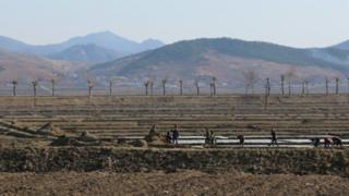 북한은 지난해 극심한 폭염으로 옥수수와 벼 작황에 큰 타격을 받은 것으로 알려졌다