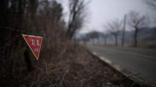 Landmines warning in woodland near the Demilitarized Zone (DMZ) in Yeoncheon, north of Seoul