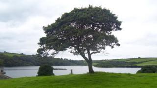 Llys y Fran reservoir