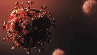 coronavirus up close