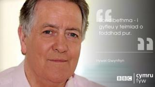 Hywel Gwynfryn