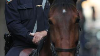A New York City police officer sits on his horse along Wall Street during a march of people associated with the Occupy Wall Street movement on May 1, 2012