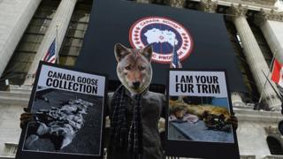 Animal rights protestor at New York stock exchange