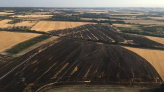 Fire-affected fields in Ewelme
