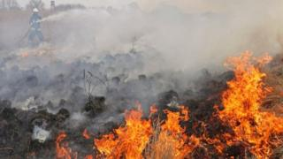 environment Fires in Poland