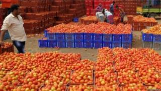 domates toptancısı