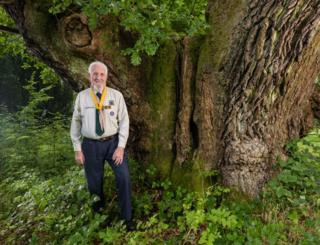 The Covenanter's Oak