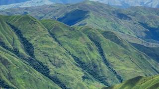 Valles de Aragua.
