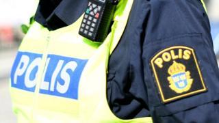 Polis, İsveç