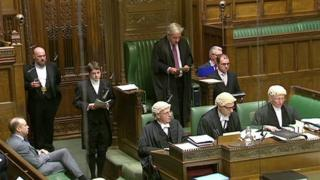 John Bercow in the House of Commons chamber