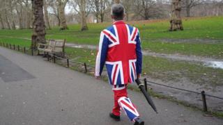человек в костюме цветов Юнион Джека. Лондон, Грин-парк