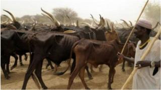 Fulani dai na fama da tashe-tashen hankali da sauran kabilu a Nigeria