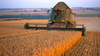Combine harvester on farm in Lincolnshire