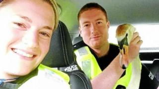 Police with swan