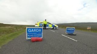 Gardaí cordon blocks toad in Enniskerry